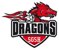 logo_sgsh
